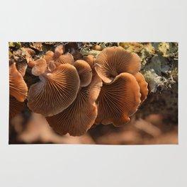 Among the Mushrooms 1 Rug