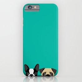 B Terrier & Pug iPhone Case
