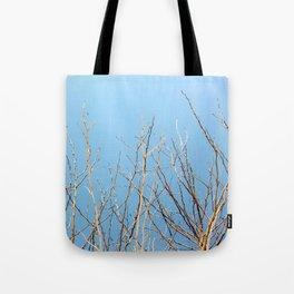 Winter Freeze Tote Bag