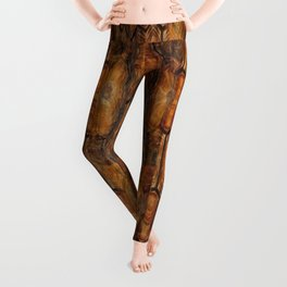 Brown Patterned  Organic Textured Turtle Shell  Design Leggings