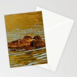 Baby loons Stationery Cards