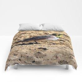 Mr. Horned Lark Comforters