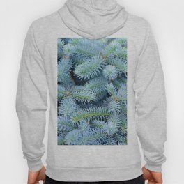 Fir branches background Hoody