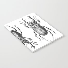 Vintage Beetle black and white Notebook