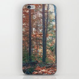 into the woods 13 iPhone Skin