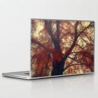 copper Laptop & iPad Skins featuring Copper Beech by Dirk Wuestenhagen Imagery