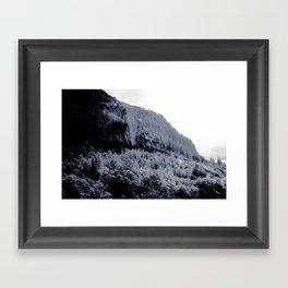 THE TREES III Framed Art Print