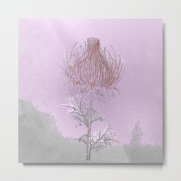 Thistle- everyone manages a plume of blood Metal Print