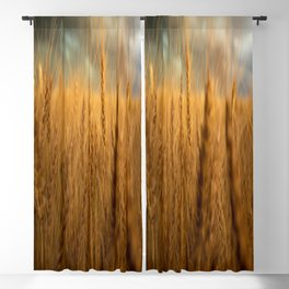 Harvest Time - Golden Wheat in Colorado Field Blackout Curtain