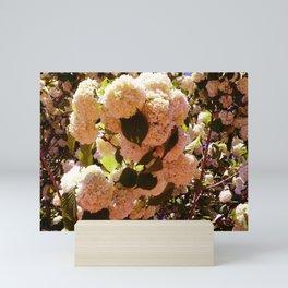 Yellow-Pink Sowballs Mini Art Print