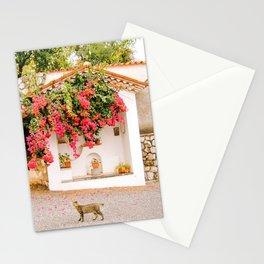 Bouganville, white chapel and cat - Maratea, Basilicata, Italy - Fine Art Travel Photography Stationery Cards