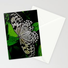 LACE -WINGED Stationery Cards