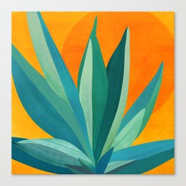 West Coast Sunset With Agave Canvas Print