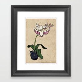 THE RARE SONGBIRD ORCHID Framed Art Print
