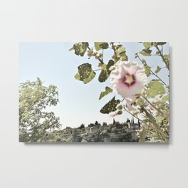 I want the flower you are Metal Print