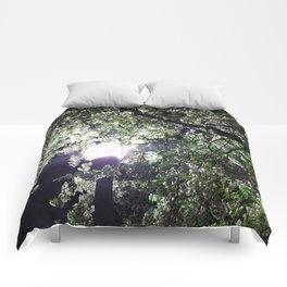 Nightly Blooms Comforters