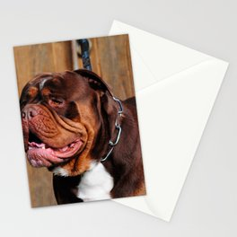 beautiful breed dog renascence bulldog Stationery Cards