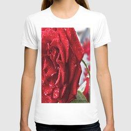 Full Bloom T-shirt