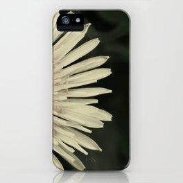 dandelion. iPhone Case