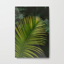 Tropical Hawaii II Metal Print