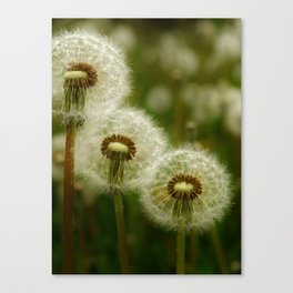 Just the Three of Us Canvas Print