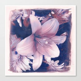 Ephemeral Beauty of Spring in Blue & Pink Canvas Print