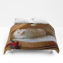 My cat is my zen master Comforters