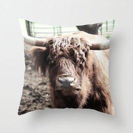 Longhorn Throw Pillow