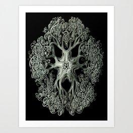 Brittle Star by Ernst Haeckel Art Print