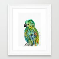 parrot Framed Art Prints featuring Parrot by Nika Akin