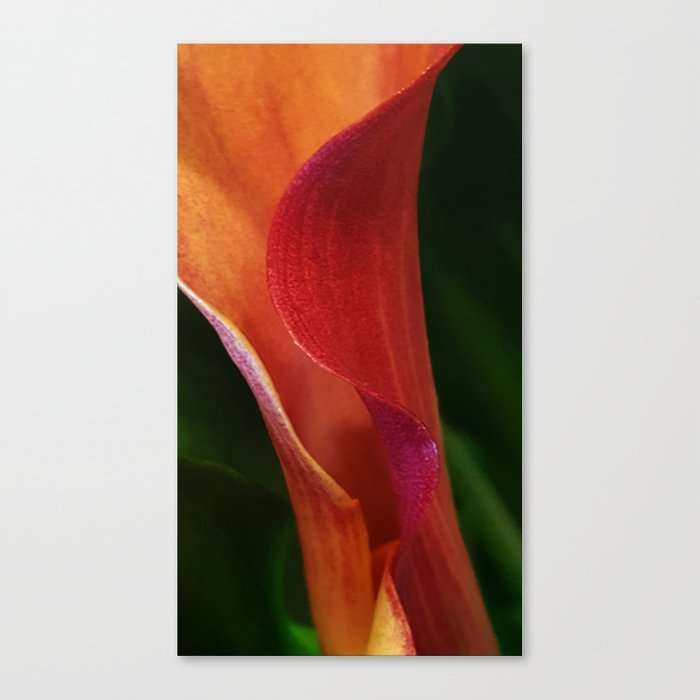 Inner She Folds Canvas Print