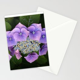 Purple Posy Perfection Stationery Cards