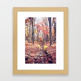FALL'S CREEK Framed Art Print