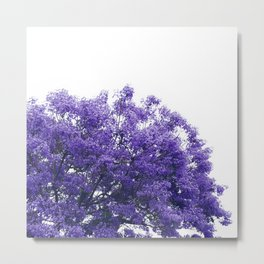 Purple Jacaranda II Metal Print