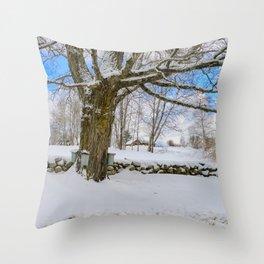 Maple sugar Throw Pillow