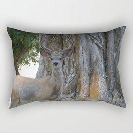 Mule-tail Deer, Buck in Velvet Rectangular Pillow