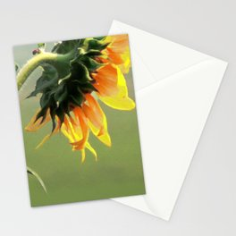 Sun Bather Stationery Cards