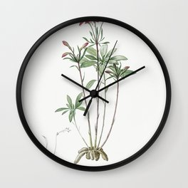 Lily of the Incas  from Les liliacees (1805) by Pierre-Joseph Redoute Wall Clock