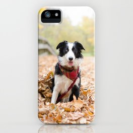 Autumn Skye iPhone Case