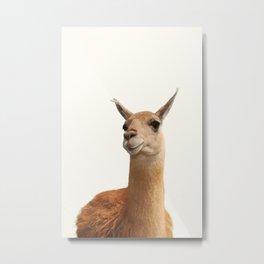 Alpaca Print, Alpaca Wall Art, Modern Minimal, original art, art print, Alpaca poster, lama print Metal Print