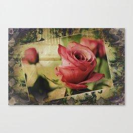 A Boxed Beauty Canvas Print