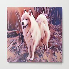 The Siberian Samoyed Metal Print