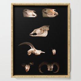 Skull Cabinet Serving Tray