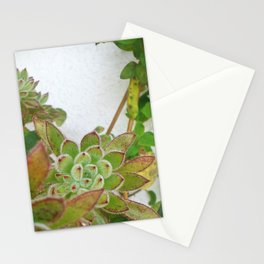 Good morning, color Stationery Cards