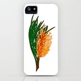 Australian Native Floral Illustration - Beautiful Banksia Flower iPhone Case