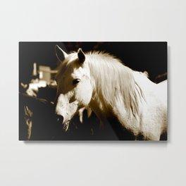 White Horse-Sepia Metal Print