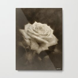 Pink Roses in Anzures 3 Antiqued Metal Print