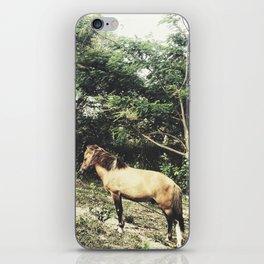 Uphill Horse iPhone Skin