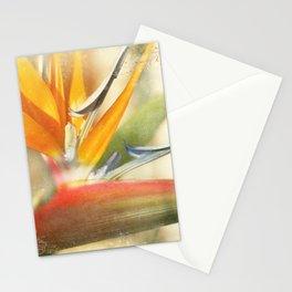 Bird of Paradise - Strelitzea reginae - Tropical Flowers of Hawaii Stationery Cards