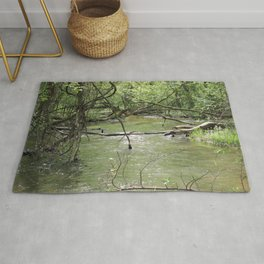 Springtime in the Forest 1 Rug
